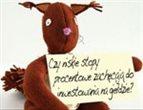 thumb, 2010100705432470_150.jpg&w=143